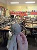 """""""Dog"""" in Elana's classroom<br /> 8/29/16"""