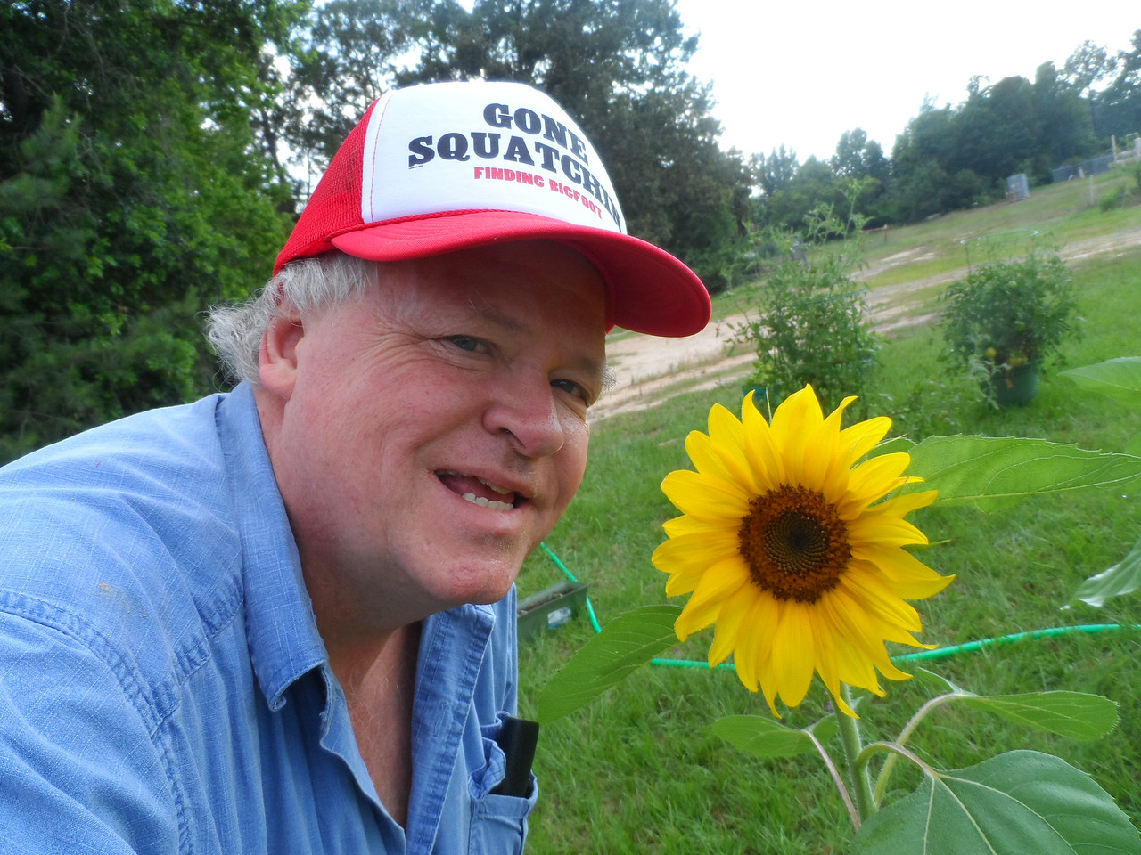 Dad likes this sunflower.