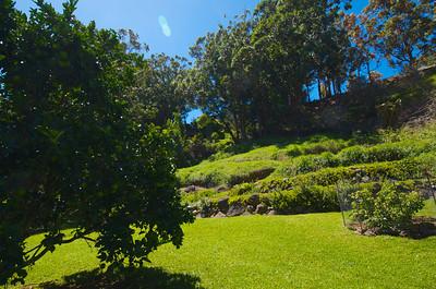 Garden Rita Okeane in Haiku