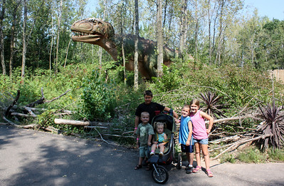 Dinosaur exhibit 2012
