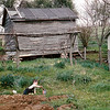 April 1966:  Dan in an area that had been plowed for a garden.  The original storage shed in back was in less than perfect condition and was later replaced.