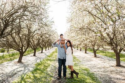 Alexandria Vail Photography Maharaj Blossoms011