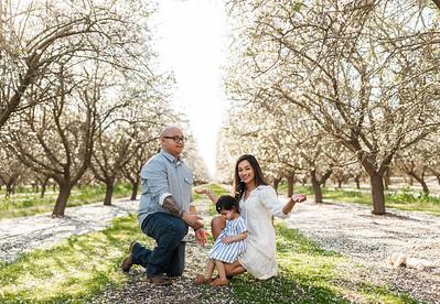 Alexandria Vail Photography Maharaj Blossoms018