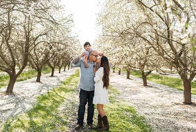 Alexandria Vail Photography Maharaj Blossoms014
