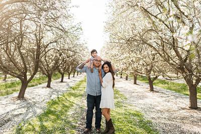 Alexandria Vail Photography Maharaj Blossoms013