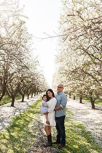 Alexandria Vail Photography Maharaj Blossoms002