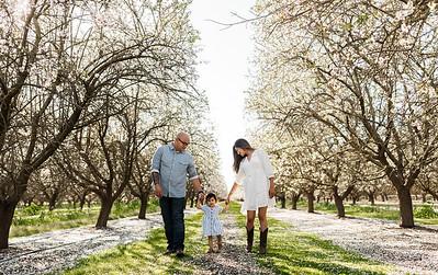 Alexandria Vail Photography Maharaj Blossoms016