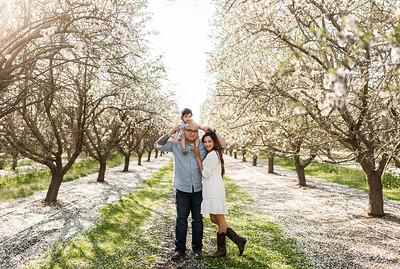 Alexandria Vail Photography Maharaj Blossoms012