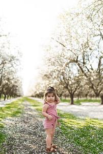Alexandria Vail Photography Manfreda Blossoms 021