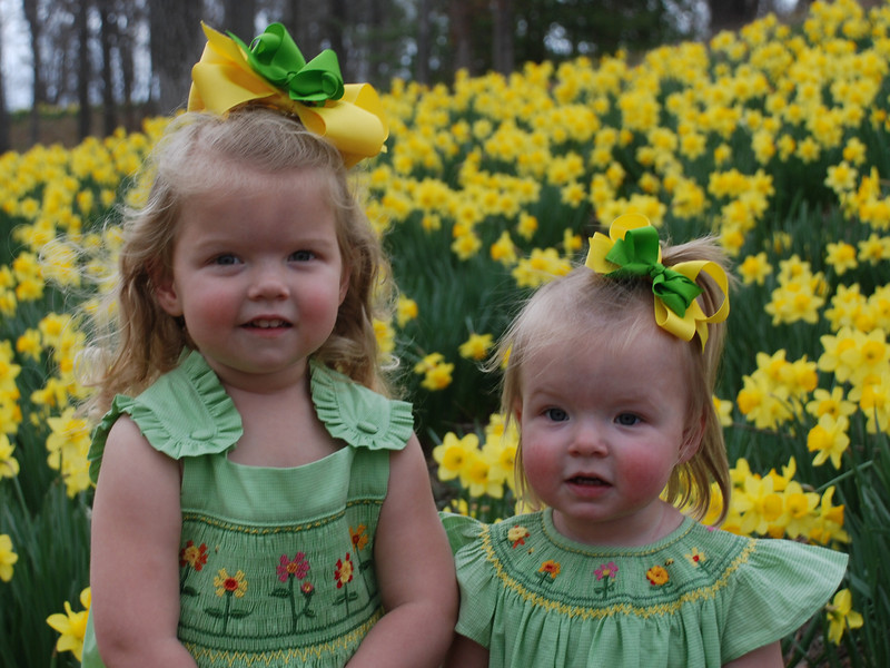 We went to Mrs. Lee's Daffodil Farm to take pictures.