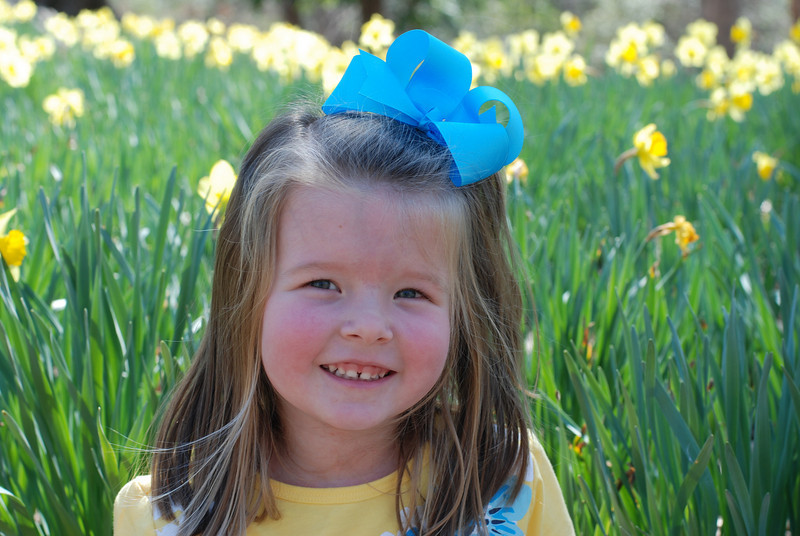 We went to Mrs. Lee's Daffodil garden and took some pictures.