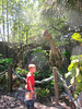 Spencer and Dinosaurs, Lowery Park Zoo, Tampa, 3/16/2013