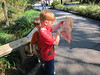 Matthew and Spencer figuring on the map, Lowery Park Zoo, Tampa, 3/16/2013