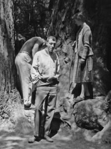 Ron Frank, Naphtali, Fern, 1957, Muir Woods