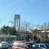 In Brooklyn, in the shadow of the Verrazano Bridge....