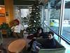 Sleepy Time bear next to the Christmas Tree, with Christine and Alex.