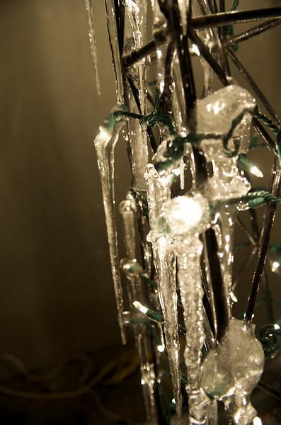 Mark_Christmas_DSC9280