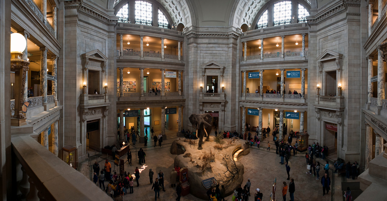 Panoramic of the Rotunda in the Smithsonian Natural History Museum. Digital, Washington, DC, March 2014. Ed