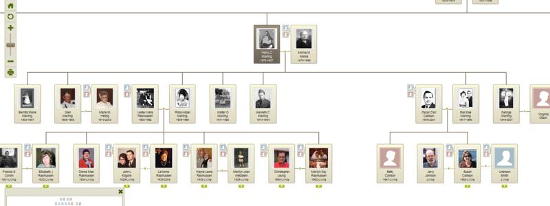 Harry & Minnie Marling descendants