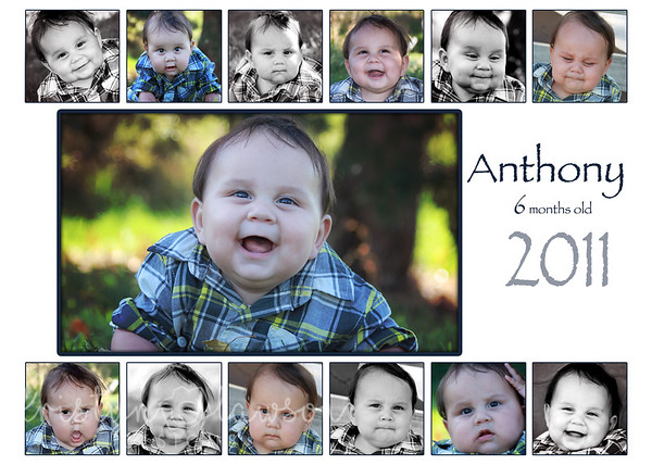 Anthony collage