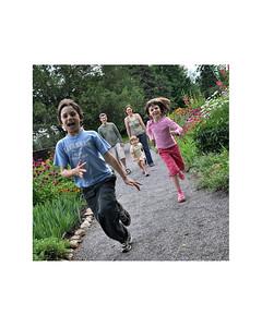 garden race 8x10