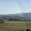 Silverado Trail View - Rutherford