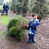 Christmas tree hunting with Tara and Matiaz