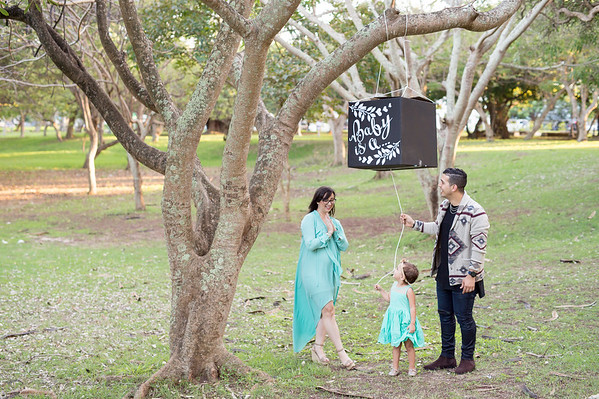 Mateo-Gender-Reveal-0013