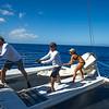 Our Paragon Sail crew hard at work.