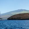 Haleakala in the background.