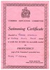 Terence Swimming Certificate 19860207