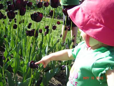 Orange City Tulip Festival.  Hadassah really liked the flowers.
