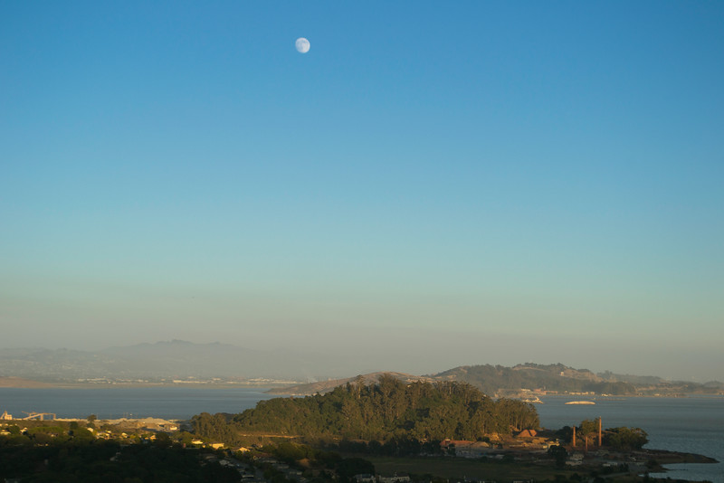 Piper's view from their deck. San Rafael