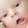 Baby Joey-11