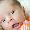 Baby Joey-13
