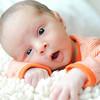 Baby Joey-8