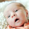 Baby Joey-18