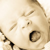 Baby Joey-16