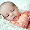 Baby Joey-17