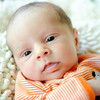 Baby Joey-19