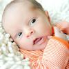 Baby Joey-12