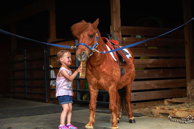 Kenzie gets Oscar ready to ride