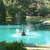 4. Pond
