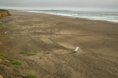 Salt Point State Park - more empty beach than you would possibly know what to do with