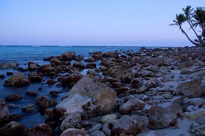 Rocky beach.