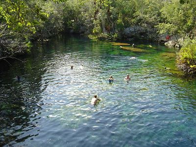 Snorkelling at the open cenote.