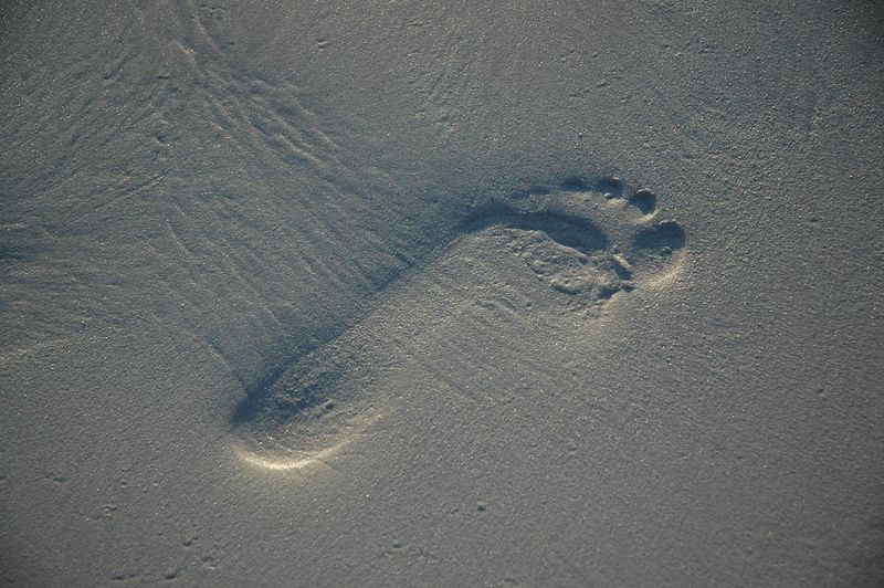 Just a footprint in the sand.