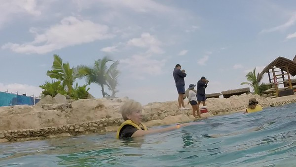 Swimming with the Dolphins in Cozumel