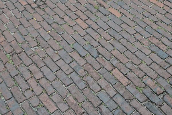 Bricks on Street in Savannah