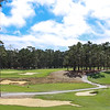 Poppy Hills Golf Course - Pebble Beach